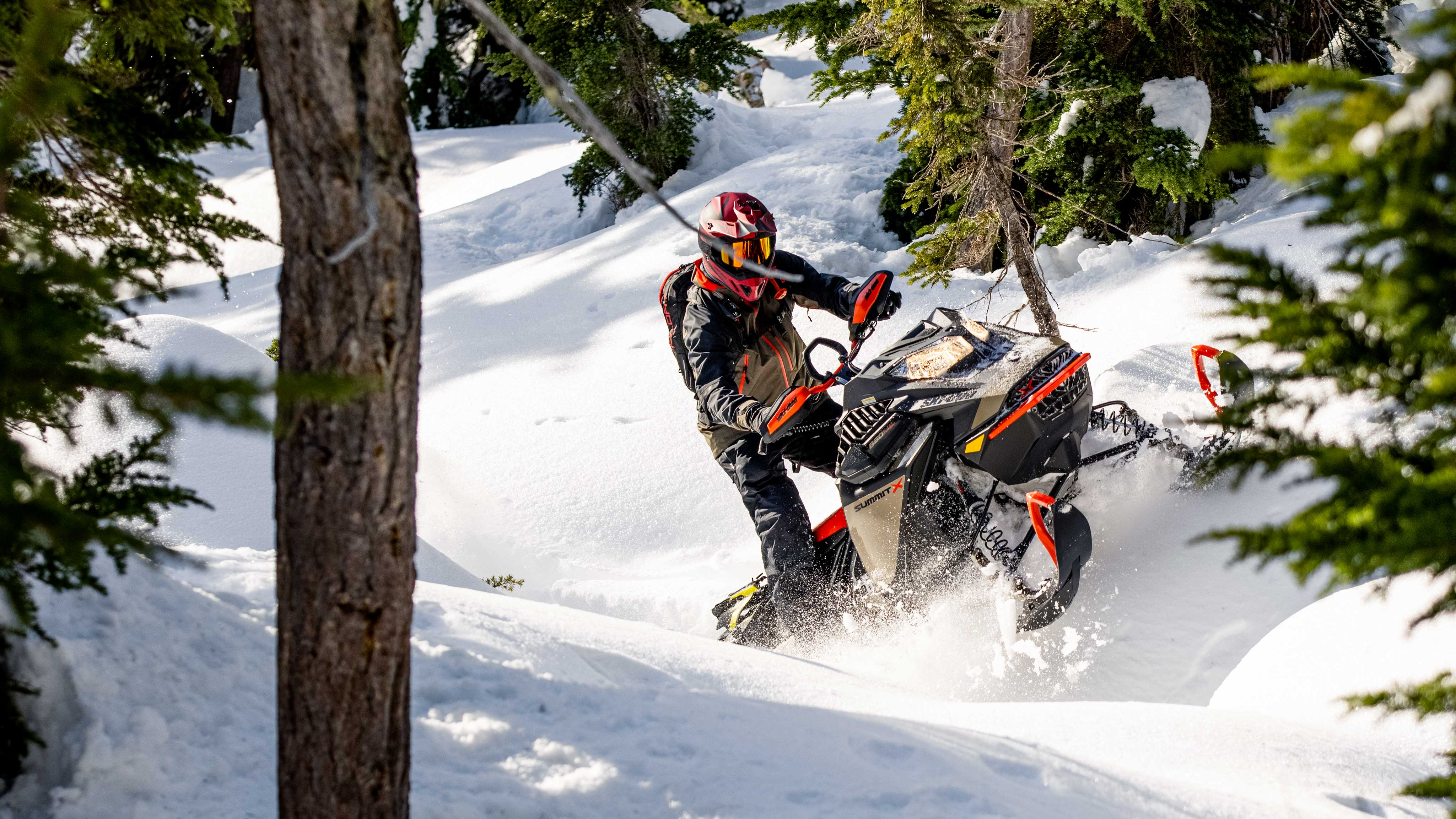 Man riding the new SKi-Doo Summit in forest